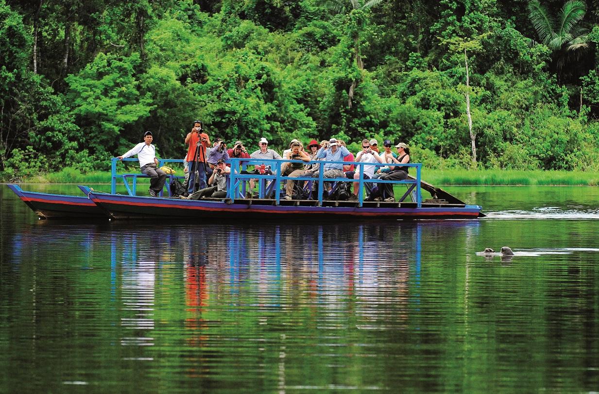 """""""Tambopata Libre"""": una campaña para apoyar la lucha contra la minería ilegal"""