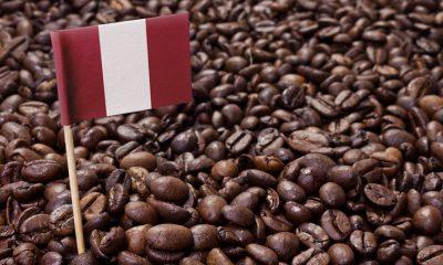 En el marco del Día del Café Peruano, aquí te traemos más de cien marcas nacionales que seguro no conocías.