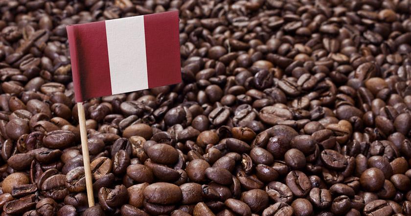 Día del Café Peruano: Descubre más de 100 marcas de café