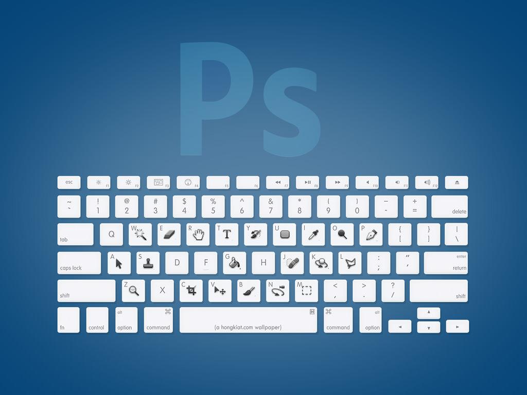 """No te pierdas este """"plage"""" de Adobe ideal para diseñadores"""