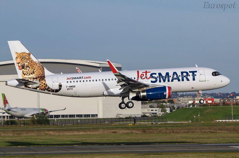 """El concepto """"salvaje"""" de esta aerolínea se ha convertido en un buen diferencial"""